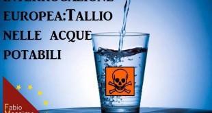 Tallio