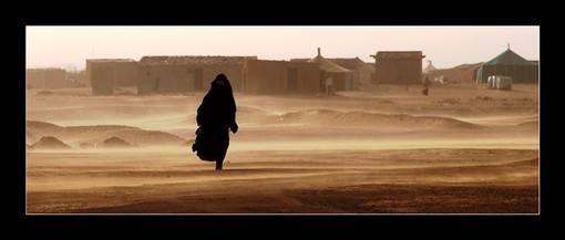 Sahrawi Interrogazione